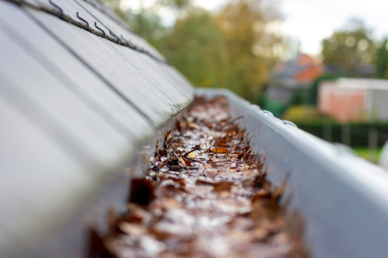 A close up image of a set of gutters that has been clogged.