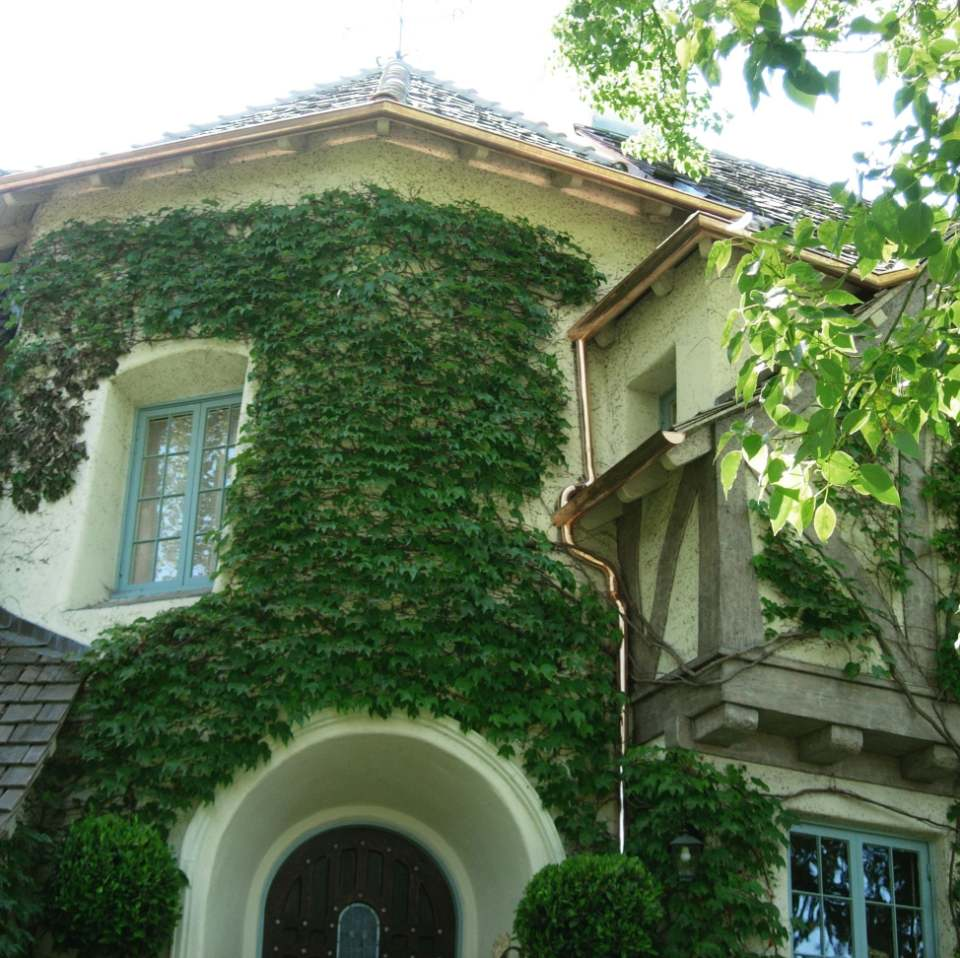 A house with extensive foliage on the front. You can see a singular window, door, and copper gutters running along the home's exterior.