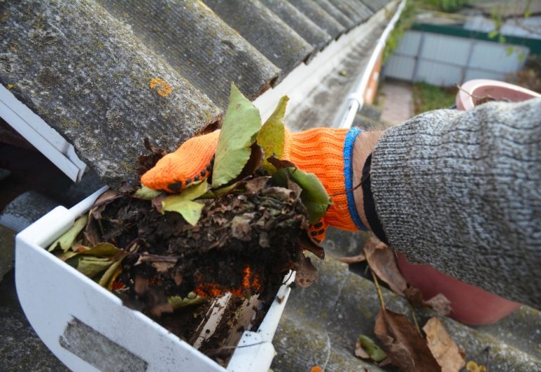 A man's orange glove can be seen with a pile of dirt and leaves in his grasp. He is scooping out the debris from the gutters below.